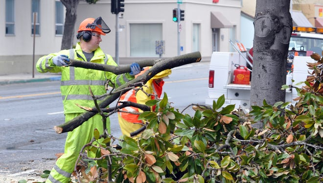 City workers with chainsaws help clear W. Alisal of fallen limbs after a severe windstorm on Friday.
