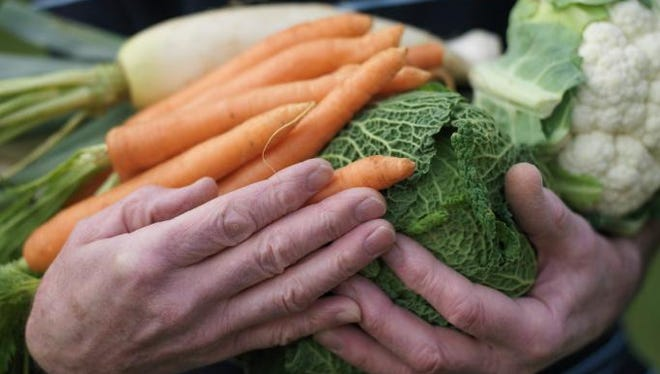 The city of Rochester, along with Foodlink, Lifespan, the Monroe County Office of Aging and Legal Assistance of Western New York, want seniors to know where to find nutritious food.