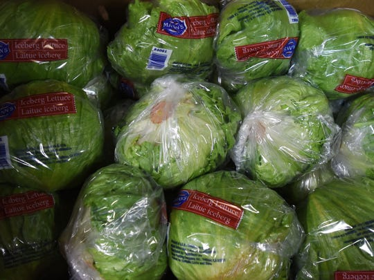 Lettuce from Santa Maria Produce. Because there is a shortage of lettuce in the country right now prices have gotten higher for the vegetable.