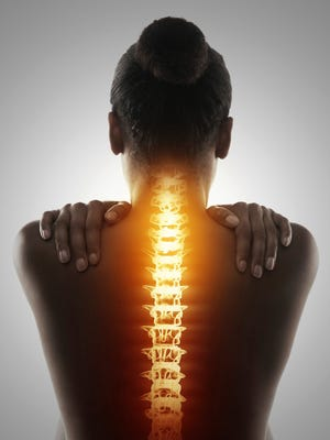 Your spine contains more than 120 different muscles.