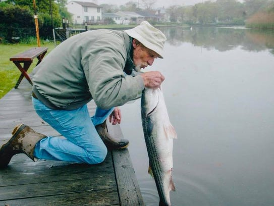 The late Joseph Spader with releases a striped bass
