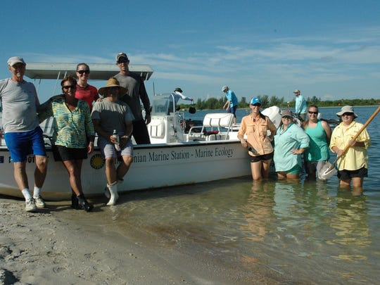 Smithsonian Marine Station staff and volunteers went out with St. Lucie County Coastal Resources on Sept. 30, 2016 for native vegetation restoration on Wesley's Island, the spoil island near the aquarium.