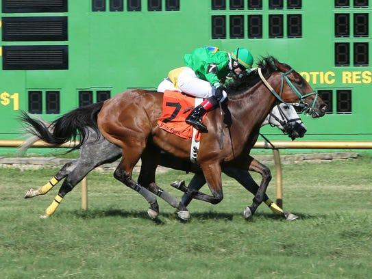 German-born apprentice jockey Caroline Quast rode Dulce