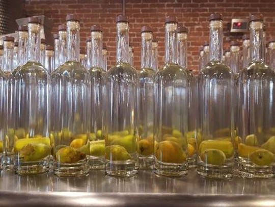 Hollabaugh Bros. grew pears in bottles for Mason-Dixon