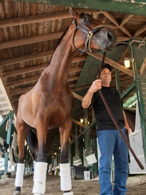 Oceanport -Assistant trainer Jimmy Barnes leads Triple Crown winner American Pharoah on his arrival at Monmouth Park Wednesday.