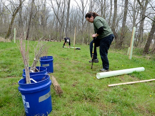 Volunteers plant trees to help water