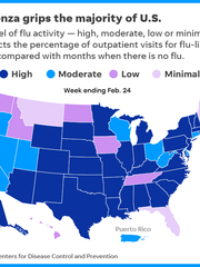 graphic of U.S. map showing where the flu is most and