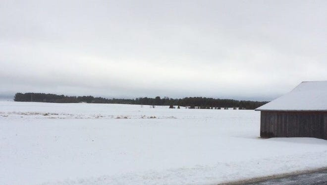 The dark skies against a field along Carnot Road north of Algoma last week provided no sun for a groundhog to see his shadow – predicting an early spring if you believe the Groundhog Day tale.