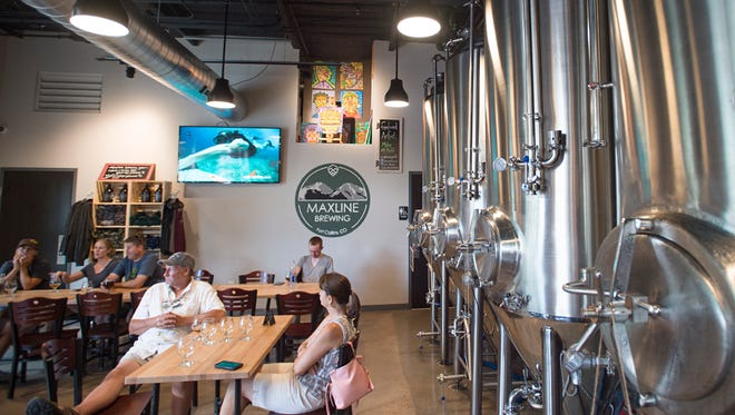 Head to Maxline Brewing to watch a movie with your pup and support a local brewery and local animal organizations.