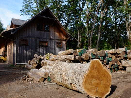 Logs wait for milling at Zena Forest Products. The company is offering public tours this summer with a look at the company's forest management practices and operations.