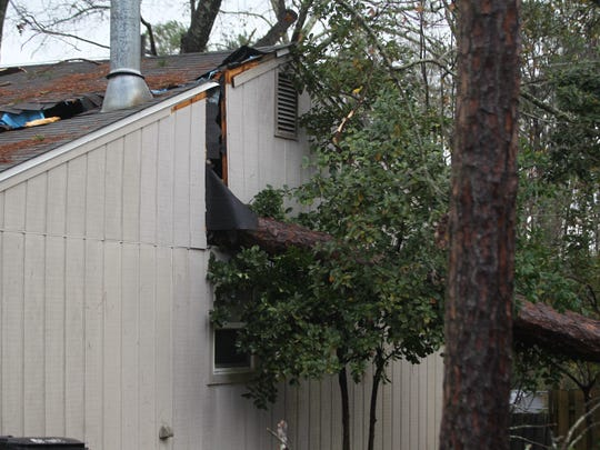 A pine tree from a neighbor's yard was uprooted during storms on Sunday, Jan. 22, 2017, and it fell onto our house in a neighborhood at Miccosukee and Fleischmann Roads.