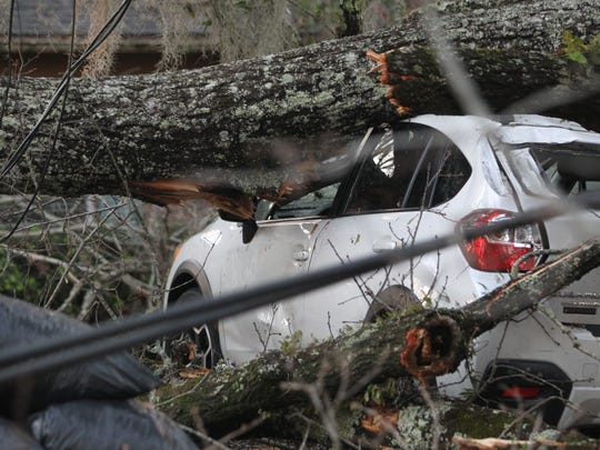 Brian Miller/Democrat A tree blew over and smashed the two cars owned by Chad Dukes, who works for the state Department of Environmental Protection. A tree blew over and smashed the two cars owned by Chad Dukes, who works for the Department of Environmental Protection.