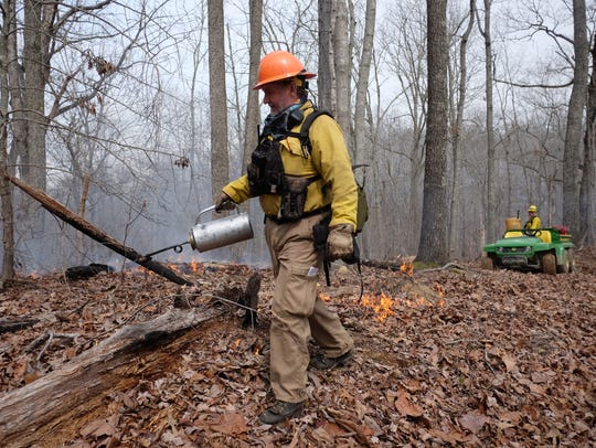 TWRA's Freddy Kelley uses a drip torch to administer