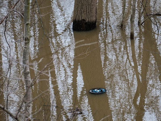 This February 24, 2018 photo show high water marks on trees at the river trail near Mt. Hope Avenue in Lansing after severe flooding hit the area.