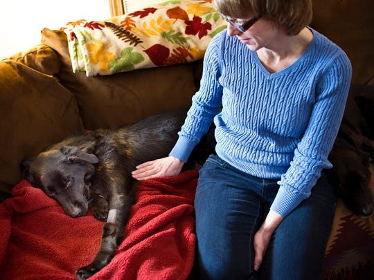 Scout, left, lounges on the couch at her Colchester home as her owner Erin Bessy gently pets her on Tuesday.