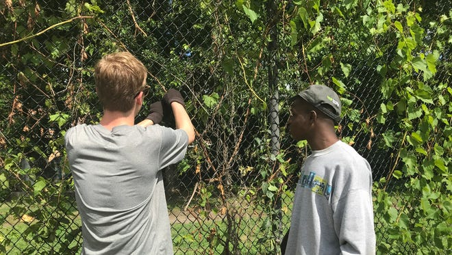 From left, Eric Hawkinson from Lourdes High School and Anointing Akpojetavwo of Poughkeepsie High School clean up Malcolm X Park on Saturday.