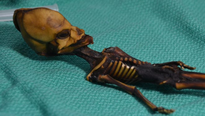 These undated images courtesy of  Dr. Emery Smith show a tiny, mummified skeleton discovery in 2003 in Chile's Atacama Desert, tucked into a leather pouch behind a church.