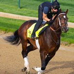 Commanding Curve trains at Churchill Downs ahead of the Kentucky Derby. April 20, 2014