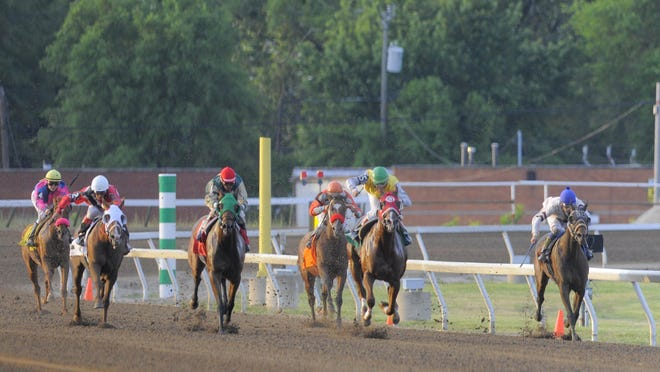 The horses come around the final turn, Friday June 27, 2014, during the third race on the first day of thoroughbred racing at Hazel Park Raceway in Hazel Park.