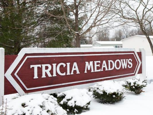 Tricia Meadows mobile home