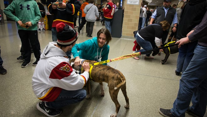 The Indy Fuel can't wait to see your dogs at their Saturday game against the Wheeling Nailers.
