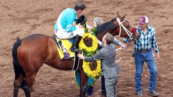 Blamed with Jockey Ken S. Tohill atop gets a flower blanket before riding into the winner's circle after winning the 18th running of the Sunland Park Oaks on March 25.