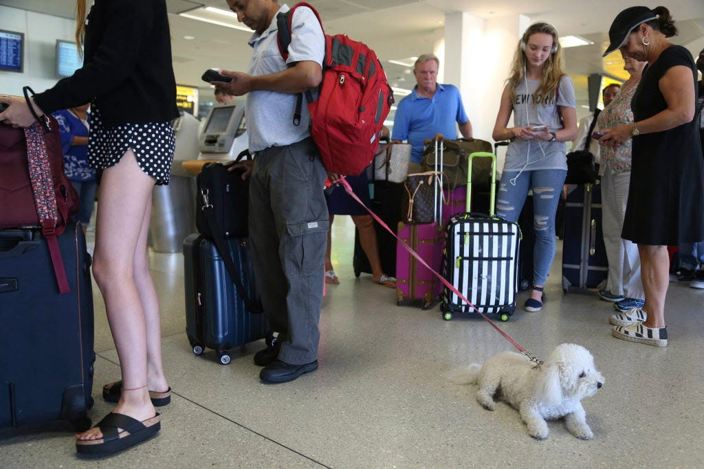 Image of: Dog Breeds Delta Bans Emotionalsupport Animals On Longhaul Flights Changes Rules For Puppies Usatodaycom Delta Bans Emotionalsupport Animals On Longhaul Flights