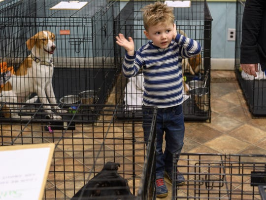 Dean Craig, 3, takes a hand off of his ear to say goodbye to several barking dogs at It Takes A Village. Dean and his mother Ashley Craig came into the shelter to look at dogs to adopt.