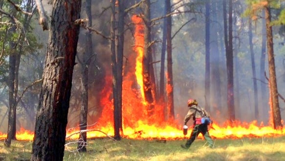 Controlled burns are a frequently used technique to eliminate fuels for wildfire in the forested land around communities such as Ruidoso and Capitan.
