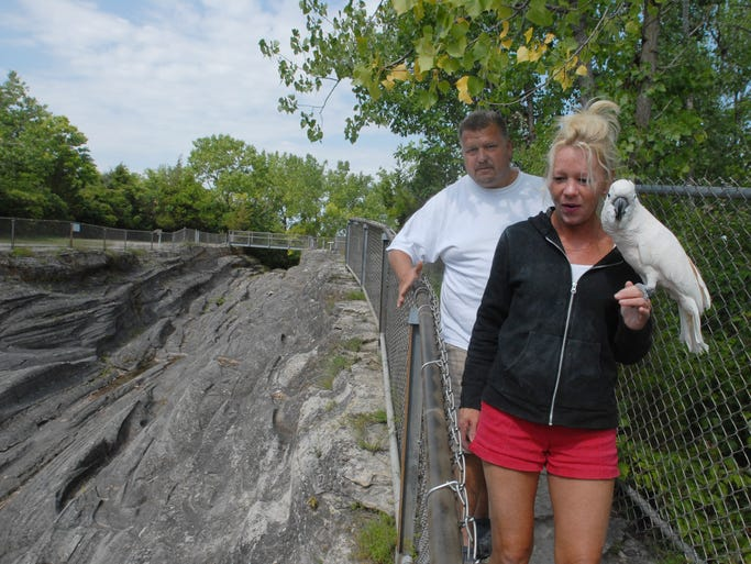 Jackie Diebert carries Boobie, an 8-year-old Moluccan Cockatoo, while visiting the glacial grooves at Kelley's Island with Mark Diebert on Monday, August 3, 2009.