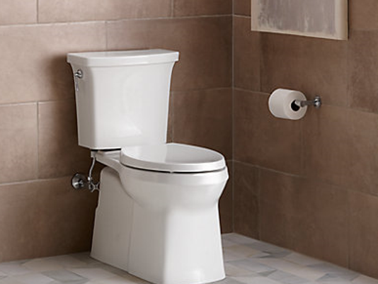 636414303424831193-toilet.PNG