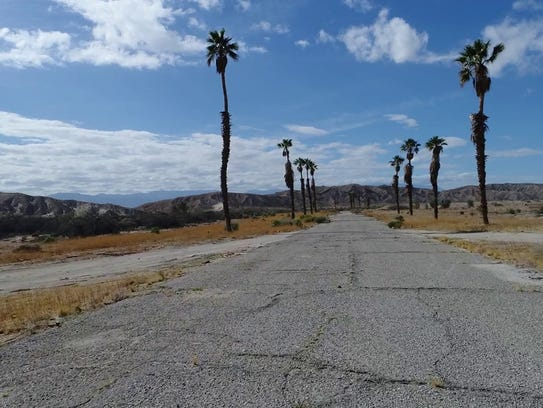 Palm Trees line a street in Grand Valley, a planned