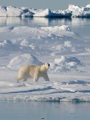 AP_Arctic_Pollution.2