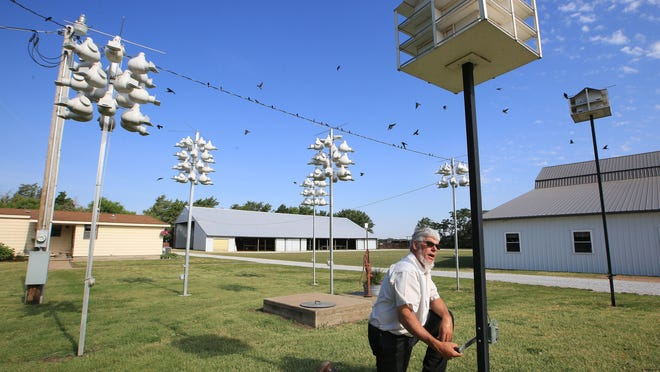 Morris Yoder moves one of his seven purple martin boxes back up into the air at his home Tuesday morning. Yoder enjoys creating an area for the migratory birds to nest in, and putting in the time and labor to keep the birds healthy and safe.