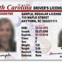 Sample SC Driver's License