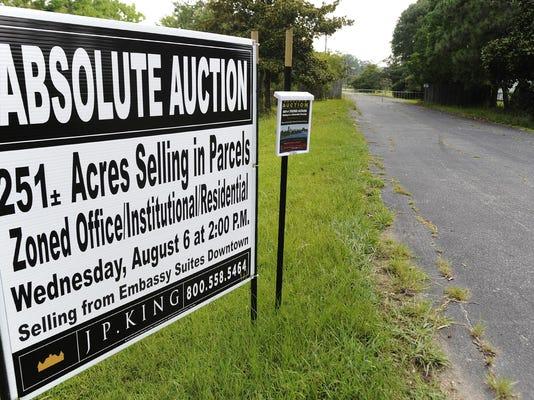 auction01.jpg