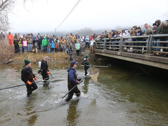 A crowd gathers as Ashleigh Read, a fish and wildlife