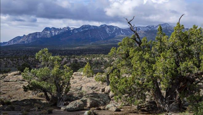 Park Range Wilderness Study Area, Nye County, Nevada