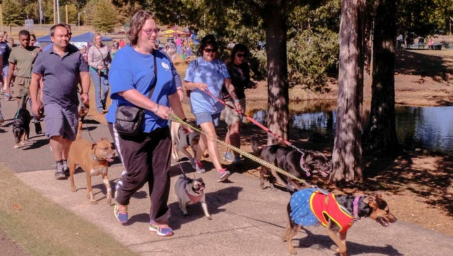 The 2-mile course for the 12th annual DeSoto Animal Rescue Society's Walk for Wags and Whiskers went through Olive Branch City Park.