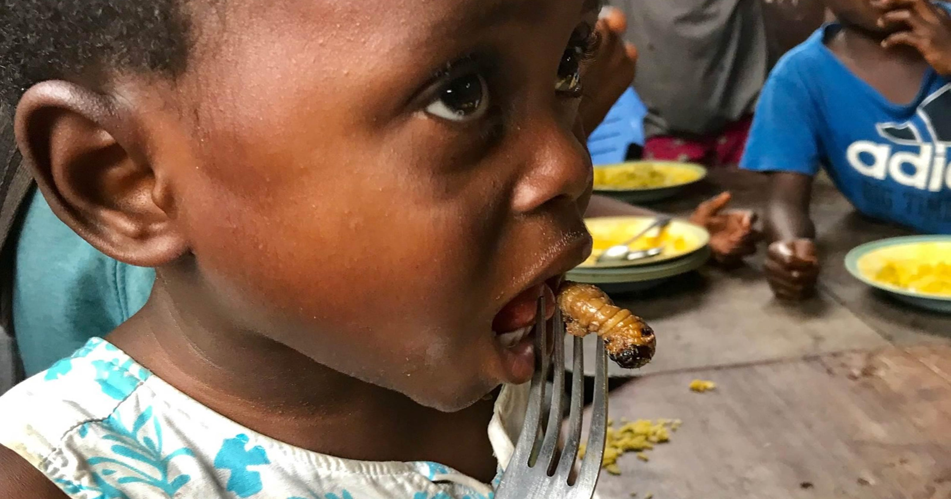 Image result for Farms for Orphans