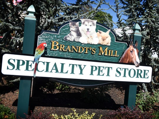Three generations and 75 years later, Brandt's Mill,
