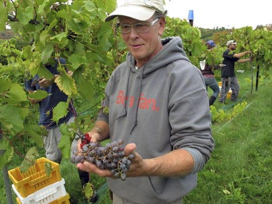 Dry Weather Vineyards (3)