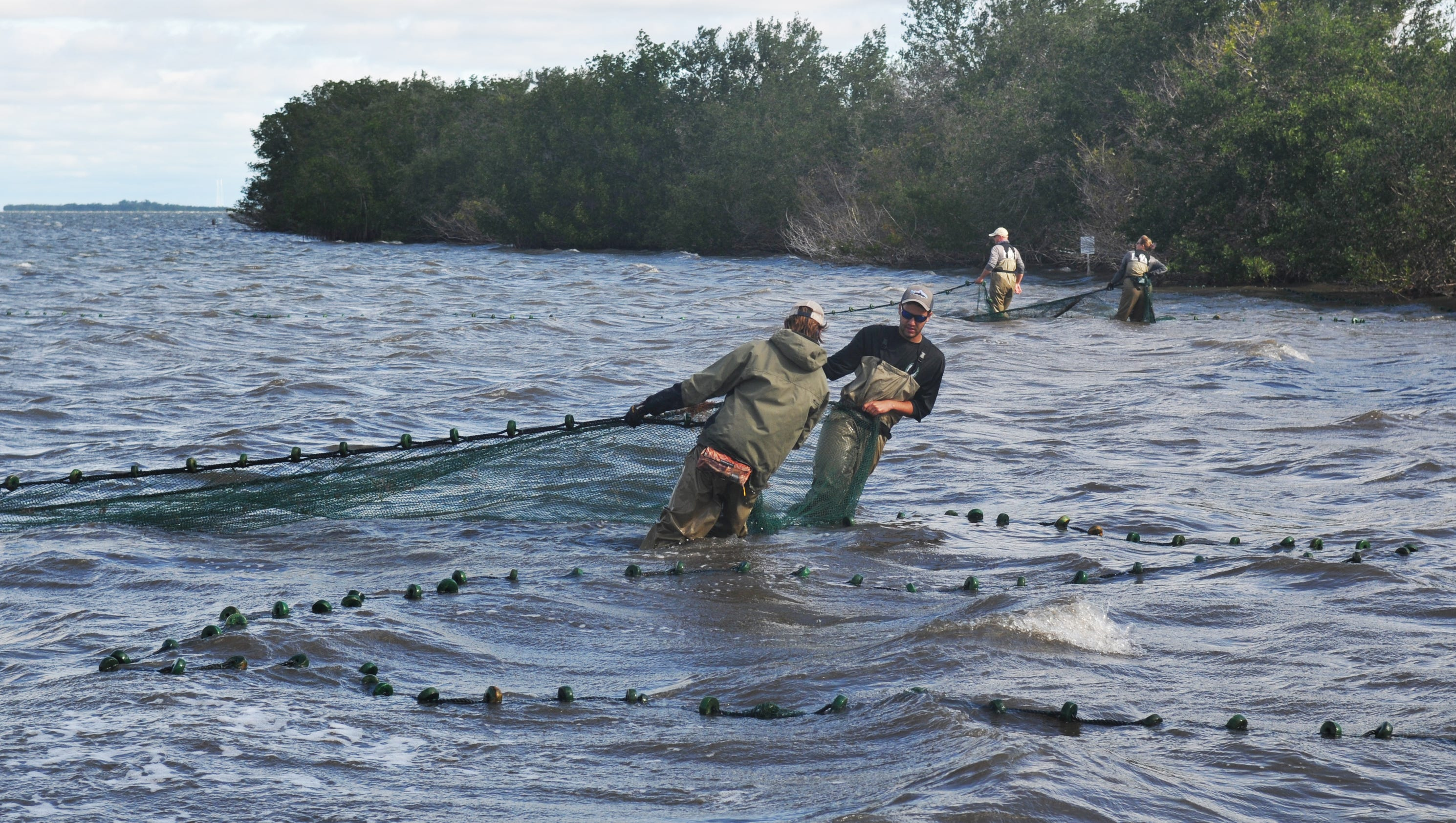 Fixing the indian river part 2 for Fish and wildlife