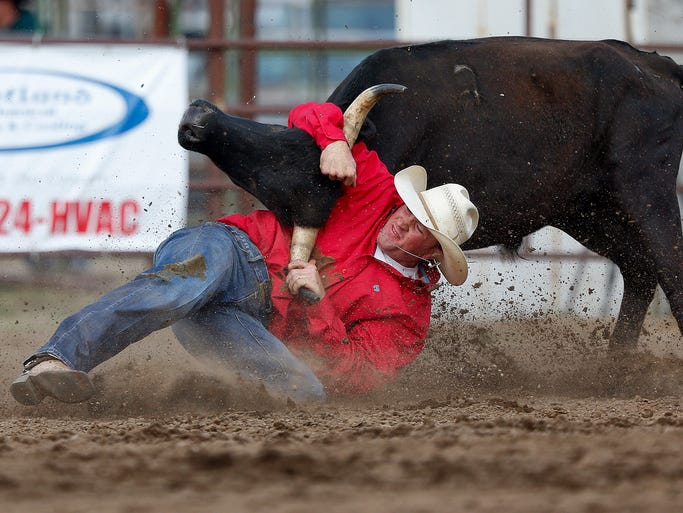 Augusta cowboy Ross Mosher wrestles his steer in 5.9 seconds in the steer wrestling event Friday, July 18, 2014, at the Marias River Stampede in Shelby.