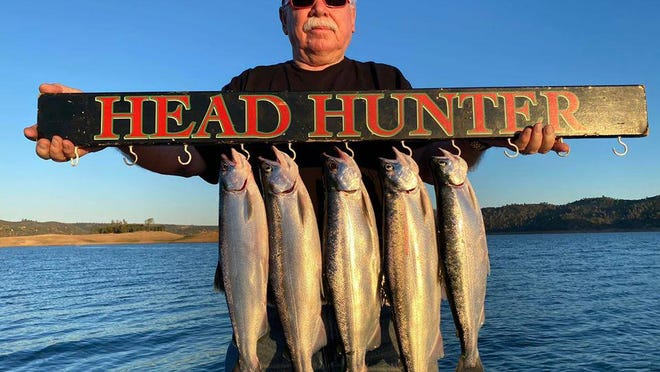 Leon Gervin landed this limit of huge kokanee salmon while trolling at New Melones Reservoir.