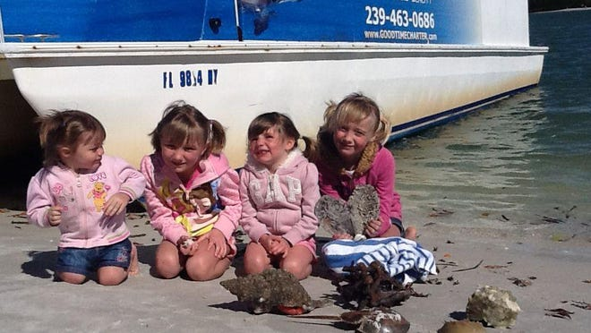 The best times to locate shells is in the morning at low tide when the water is calm or after a tropical storm.