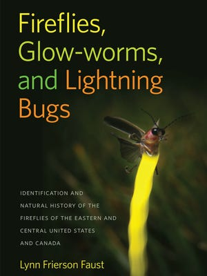 """""""Fireflies, Glow-worms and Lightning Bugs"""" by Lynn Frierson Faust"""