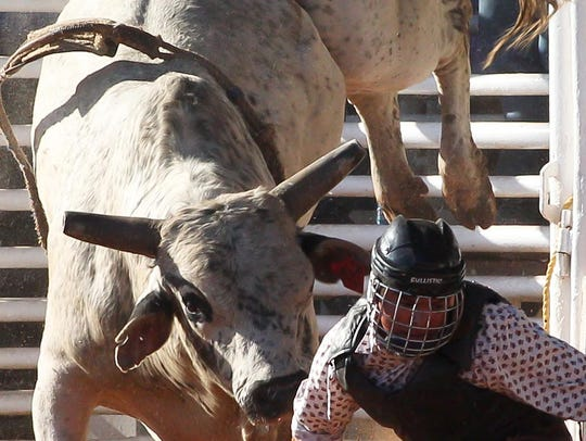A thrown bull rider scrambles out of the way at the