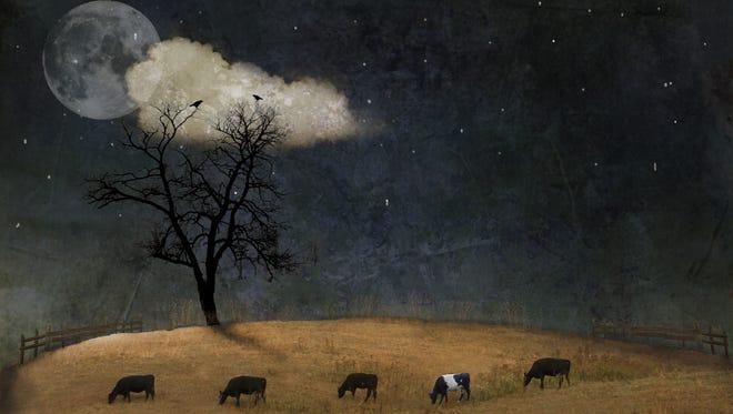 """""""Midnight Fairy Tale"""" by Cheryl Tarrant."""