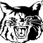 Roundup: Newark wrestling duo places at Maumee Bay